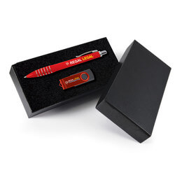 Stylish Pen and Swivel Flash Drive Gift Set